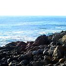 California Coastline 0468 by eruthart