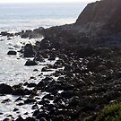 California Coastline 0488 by eruthart