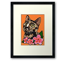 Evey the Adventure Cat Framed Print