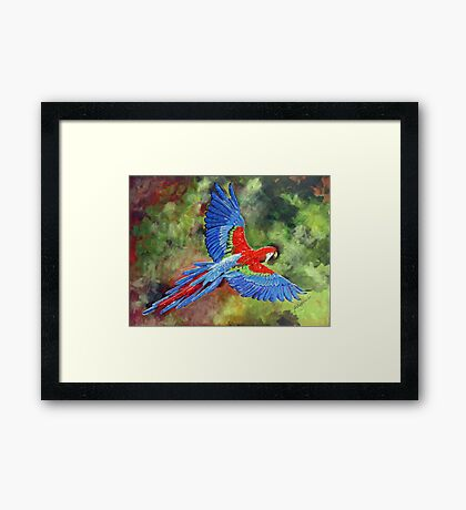 The colours of Nature Framed Print
