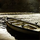 Tay Fishing Boat by Doug Cook