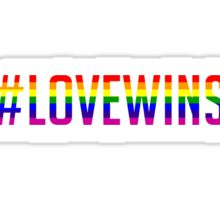 #LoveWins  Sticker