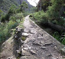 Aqueduct Walk in Werribee Gorge State Park-one by DianneLac