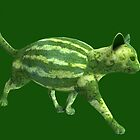 Weird Melon Cat by Mythos57