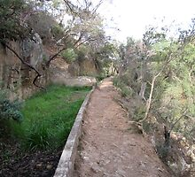 Aqueduct Walk in Werribee Gorge State Park-two by DianneLac