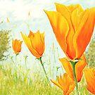 Orange Flowerfield by FranEvans