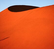 Sculptured dune, Namib Desert soon after sunrise  by Carole-Anne