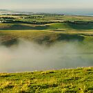 Morning fogs - Sth Gippsland by Tony Middleton