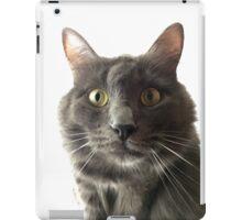 The Cat iPad Case/Skin