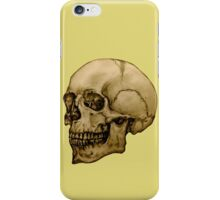 Anatomical Adult Skull iPhone Case/Skin