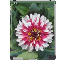 Red or Pink & Pretty Pom-Pom? iPad Case/Skin