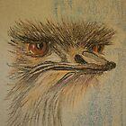 Ostrich by Linda Ridpath