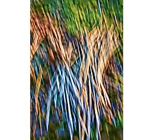 Brush Abstract Photographic Print