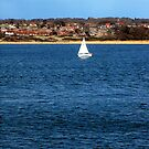 Perfect Sailing Weather by trish725