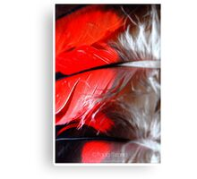 Tokens of Life Canvas Print