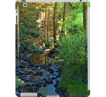 Forest, a river, a valley and summertime iPad Case/Skin