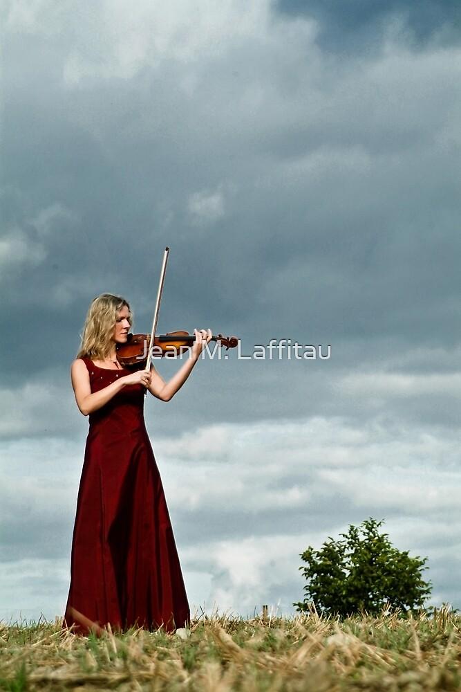 Nature Violin 03 by Jean M. Laffitau