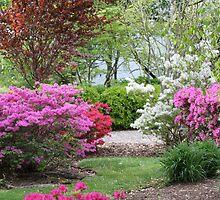 My Garden by ZeeZeeshots