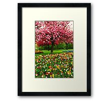 Paint Box Garden Framed Print