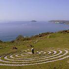 Devon: The Labyrinth on Bodigga Cliff by Rob Parsons
