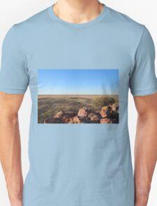 Dinosaur Lookout T-Shirt