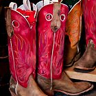 Red Boots by phil decocco