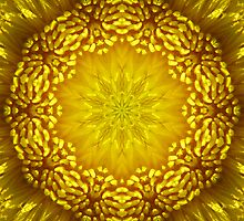 Kaleidoscoped Dandylion by swaby
