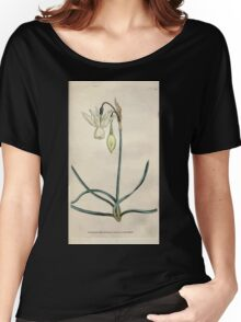 The Botanical magazine, or, Flower garden displayed by William Curtis V1 V2 1787 1789 0108 Narcissus Triandrus, Reflexed Daffodil Women's Relaxed Fit T-Shirt