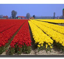 2-lips in Holland   by John44