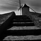 Consuegra Steps by ragman