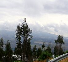 Panoramic Beauty Of Ecuador by Al Bourassa