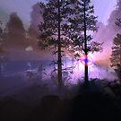Strange light in the forest by krazyredboy