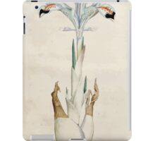 The Botanical magazine, or, Flower garden displayed by William Curtis V1 V2 1787 1789 0006 Persica Persian Iris iPad Case/Skin