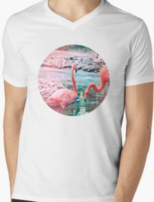 Exotic flamingos Mens V-Neck T-Shirt