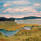 View From Plum Island by Caroline  Hajjar Duggan