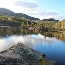 Platypus Point Dunn's Swamp NSW by KazM
