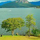Lake Moogerah View by Penny Smith