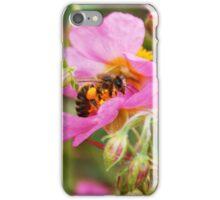 Honey Bee hard at work iPhone Case/Skin