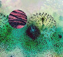 Fireworks 1 by Rebecca Sheardown