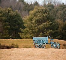 Blue Farm Wagon by phil decocco