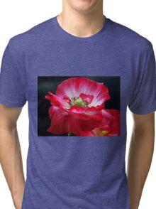 Windswept Tri-blend T-Shirt