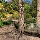 A Place for Contemplation by Marilyn Cornwell