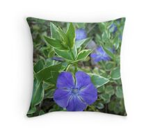I get the blues.... Throw Pillow
