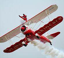 Wingwalker by Stuart Robertson Reynolds