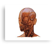 Anatomical Head and Neck dissection Canvas Print