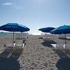 Getting Ready For Another Sunny Day On South Beach by Pamela McCreight
