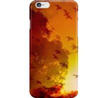 This is Our Land iPhone Case/Skin
