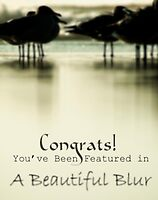 for A Beautiful Blur featured banner challenge by Jenny Miller