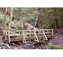 Coal Creek Falls and Foot Bridge Photographic Print