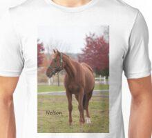 Nelson - NNEP Ottawa ON Unisex T-Shirt